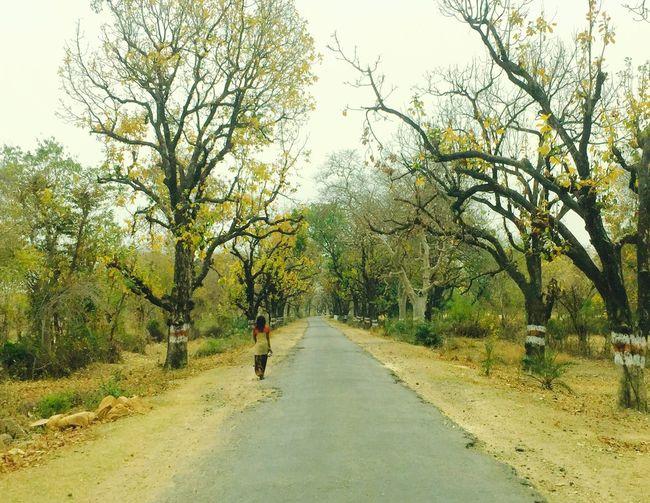 Iphoneonly EditedOnPhotosApp Newbie RuralIndia