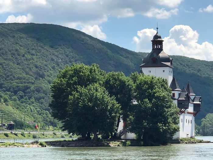 Schloss im Rhein Architecture Built Structure Building Exterior Tree Sky Plant Building Outdoors Water Cloud - Sky No People River