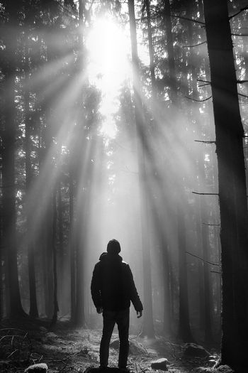 Pure energy Alone Bright Day Forest Light Moments Monochrome Monochrome _ Collection Nature Nature Photography Nature_collection Ray Of Light Sun Sunbeams Sunlight TakeoverContrast Welcome To Black Lost In The Landscape Black And White Friday HUAWEI Photo Award: After Dark