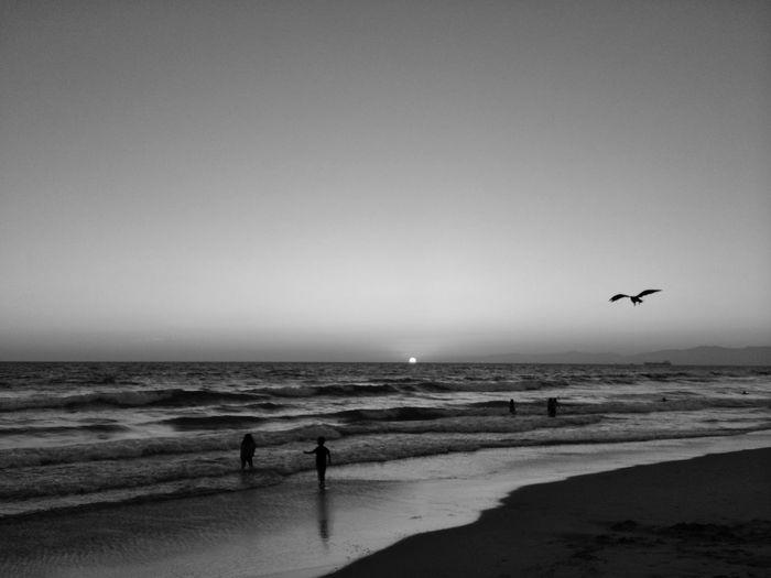 Redondo Beach,