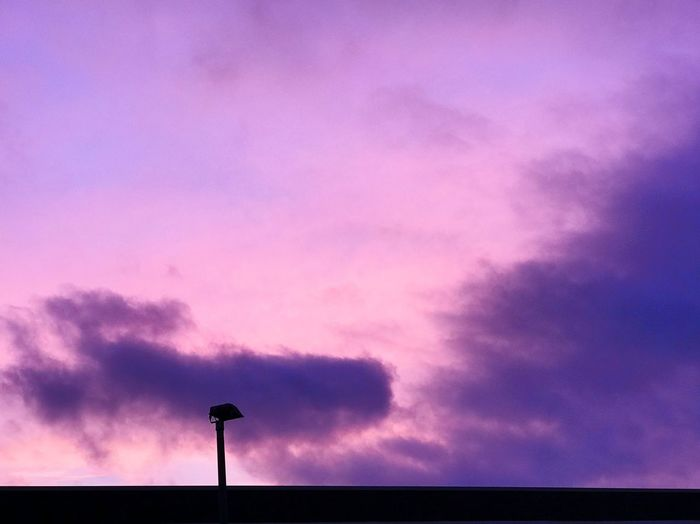 Low angle view of silhouette pink and purple sky