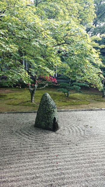 Japan Scenery Japanese Traditional Japanese Culture 枯山水 Dry Landscape Zen 禅 Japan Photography at Japan 高野山 Koyasan