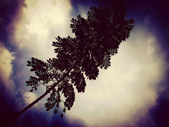 Taking Photos Popular Nature Sky