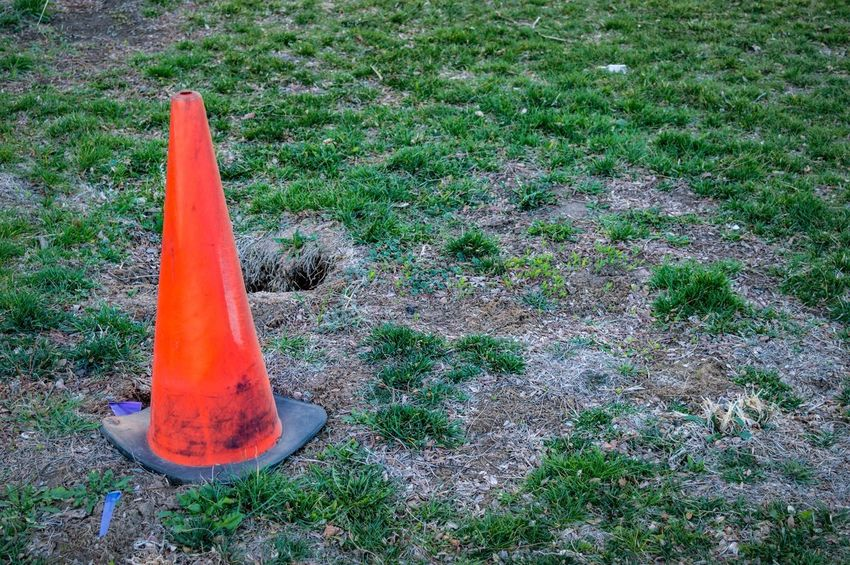 Beware of hole near the orange cone Orange Cone Hole In The Ground Beware Early Morning Light Morning Nature  Early Morning Walk Beware Of Hole Plant High Angle View Day Cone Traffic Cone No People Grass Green Color Orange Color