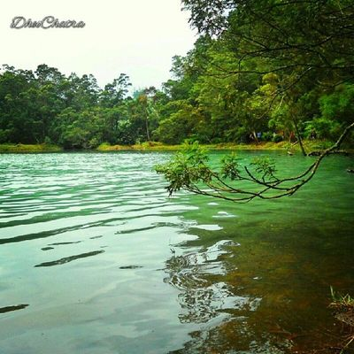 Telaga warna Describeindonesia Instabestplus Instanusantarasurabaya Instanusantara joininstanusantara waterscape nature indonesiaku travelindonesia beautifulindonesia indonesia_photography