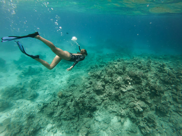 Woman snorkeling underwater Swimming Adventure Aquatic Sport Diving Equipment Exploration Freediving Leisure Activity Lifestyles Marine Real People Sea Life Snorkeling Swimming Swimming Fins UnderSea Underwater