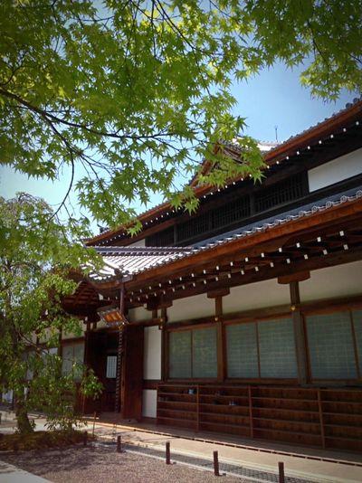 Kyoto Japan Sho-gunzuka Seiryuden Blue Sky Higashiyama Temple Today 京都 日本 将軍塚 青龍殿 東山 今日