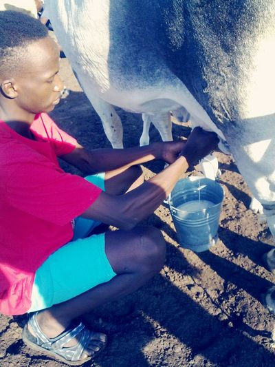 Milking 'em cows! Check This Out Enjoying Life That's Me Everyday Lives