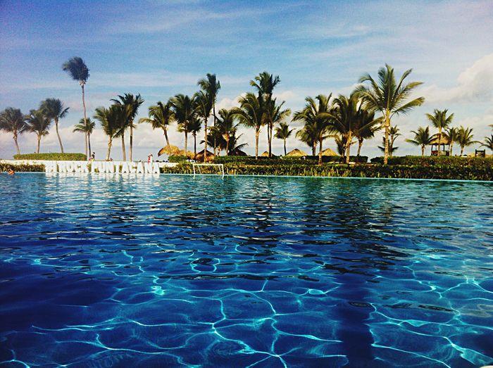 Punta Cana HardRockHotel Caribean Tour Working Traveling Mac Swimming Pool Inthemoment