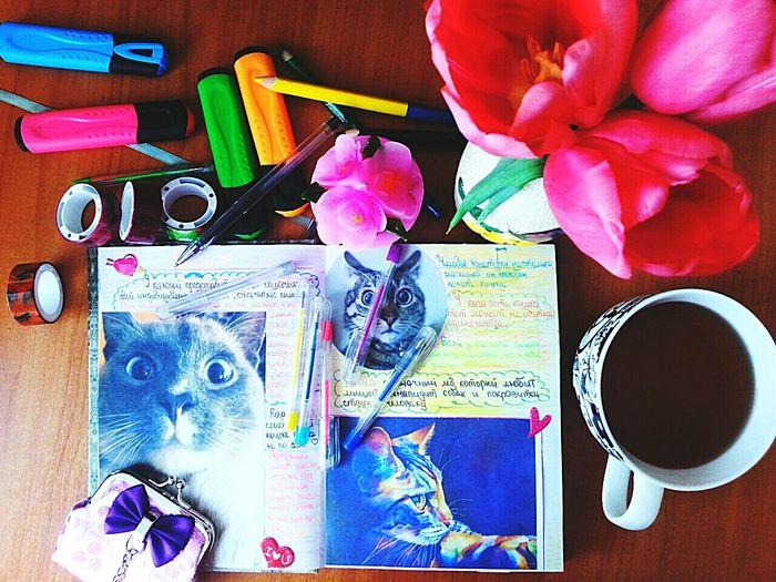 с 8 марта коти))) Relaxing