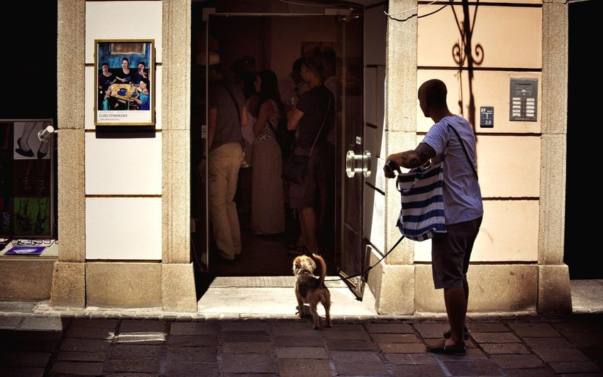 Summer Dogs Looking For Art Streetphotography From My Point Of View Beauty In Ordinary Things