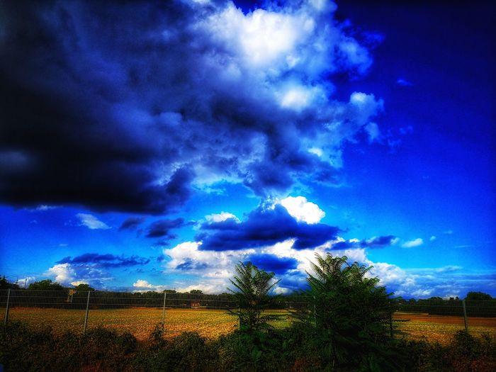 Felder Im Sommer Korn Felder Cloud Landscape Summer Felder, Clouds Cloudy Trees EyeEm Selects Lightning Tree Sky Cloud - Sky Countryside Green Dramatic Sky Atmospheric Mood