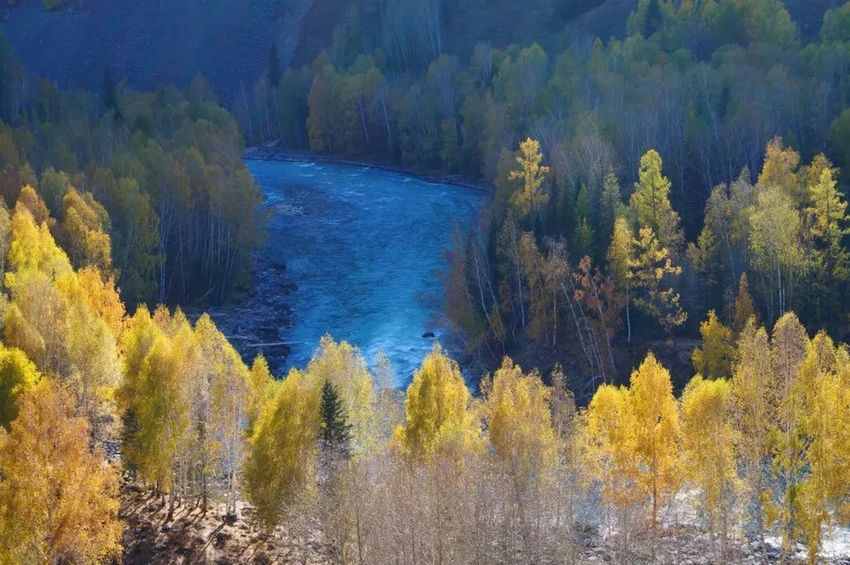2015.9.27 -China xinjiang Forest Tree Nature Beauty In Nature Tranquil Scene River Scenics