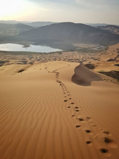 Climbing one of the highest sand dunes in the world is tough work! Sand Deserts Around The World Desert Desert Landscape Desolation Isolation Tranquil Scene Scenics Tranquility Beauty In Nature Travel Destinations Non-urban Scene Nature Water Sky Tourism Outdoors Remote Calm Vacations Sand Dune Beauty In Nature Nature Adventure