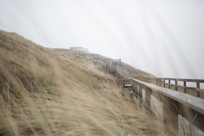 Beach Beauty In Nature Day Dunes Fog Grass Island Landscape Misty Nature No People Nordic Sea Outdoors Sanddunes Scenics Seaside Sky Sylt Tranquility