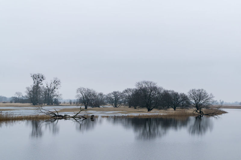 Landsscape photography in the area of Oderbruch in Germany. Gray Sky Ice Reflection Bare Tree Beauty In Nature Cold Temperature Day Flood Lake Nature No People Outdoors Reflection Scenics Sky Tranquil Scene Tranquility Tree Water Waterfront