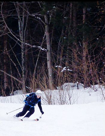 Winter Cold Temperature Snow Nature One Person Tree Real People Mountain Outdoors Slope Adrenalin High Speed Skiing 🎿 Snow Sports