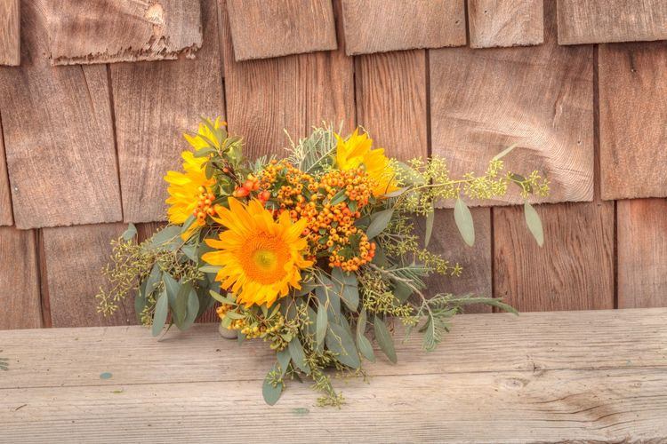 Holiday flower bouquet inside a gourd vase with red berries, green leaves and sprigs, and sunflowers on a rustic wood farm house background. Autumn🍁🍁🍁 Beauty In Nature Bouquet Centerpiece Day Fall Fall Colors Farm Ferns Flower Flower Head Fragility Freshness Gourd Vase Halloween Holiday Nature No People Orange Berries Outdoors Plant Rustic Sunflowers🌻 Thanksgiving Yellow