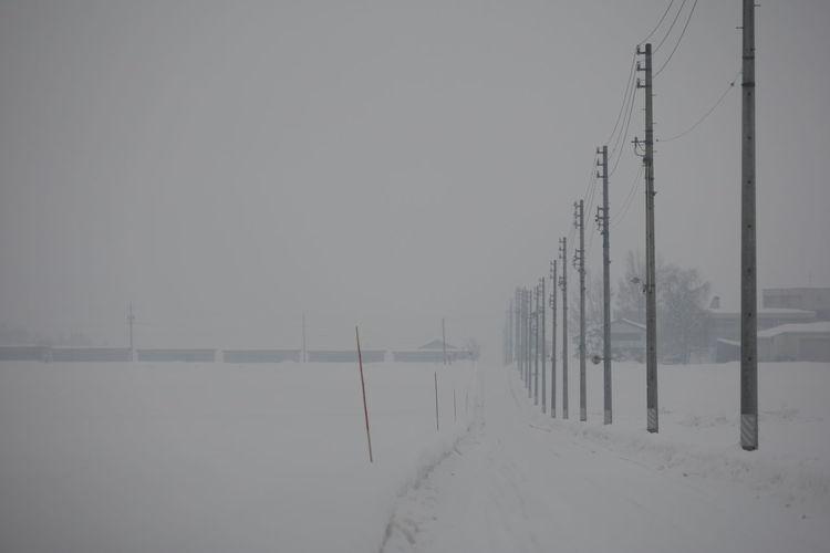 長野県飯山市の雪が降る景色 Snow Snowing Snow ❄ No People Landscape White Color White Japan Japan Photography Outdoors Winter