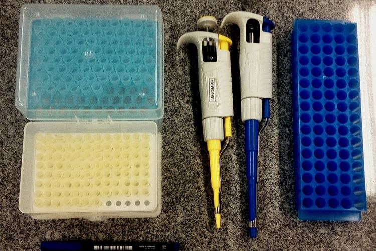 Laboratorylife Scientistlife WORKHARD Organization Colors