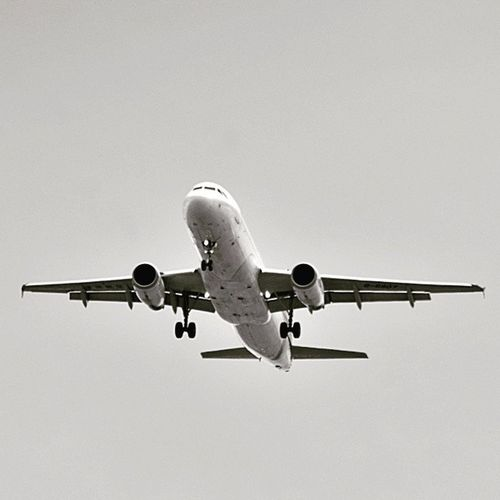fly me to the moon BonVoyage Catchingflights Startingtrip Travel Public Transportation Airplane Aircraft Blackandwhite