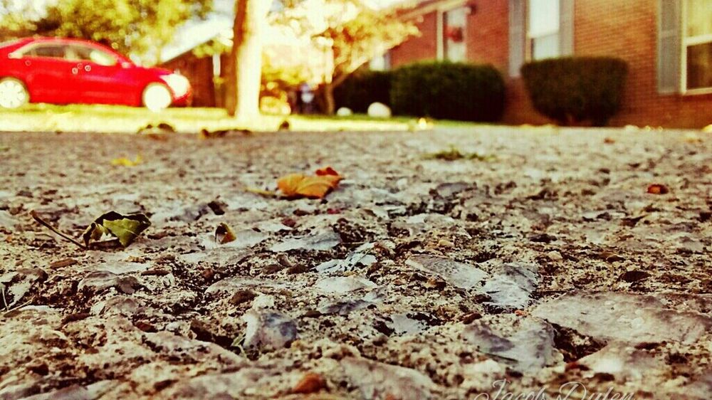 Relaxing Check This Out Hanging Out Enjoying Life Taking Photos Hi! Hello World Cheese! First Eyeem PhotoThat's Me