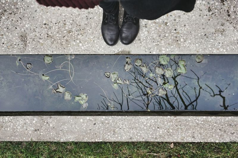 Trees and leafs in the water | Looking Down Reflections Trees Leafs My Shoes Architecture Garden Carlo Scarpa Venezia Getting Inspired Walking Around Showcase: February Lines And Shapes WomeninBusiness Fondazione Querini Stampalia The Great Outdoors - 2016 EyeEm Awards The Street Photographer - 2016 EyeEm Awards Saturday Afternoon EyeEm Italy |