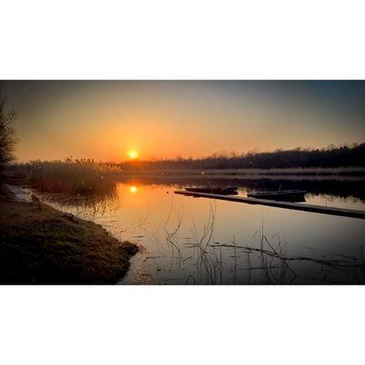 Sunset of the early spring at Lake Szelid Sunset Sunset_madness Sunsetlovers Sunset_hub Sunset_stream Viewmysunset Sun Lumia Lumia930 Lumiaphotography Lake Landscape Hungary Szelidito Szelidilake Szelid Instagrammers Tgif_sunset