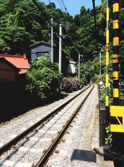 Japan Kamakura Enoden Gokurakuji Ajisai