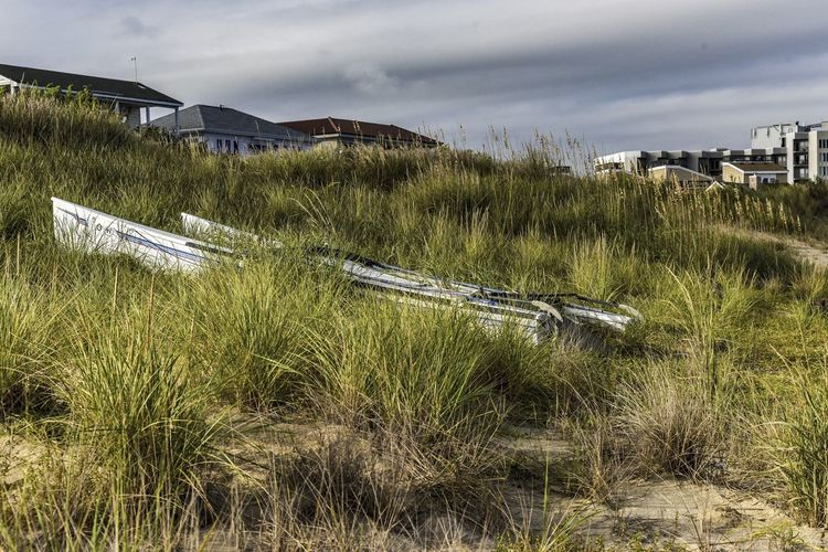 A Sleep on the Beach Grass Plant Built Structure Architecture Building Exterior Nature Sky Day No People Land Cloud - Sky Water Field Growth Outdoors Mode Of Transportation Transportation Environment Scenics - Nature Catamaran Tall Grass, Abandon Beach Front, Beach, Boat A Shore, Boat On Dry Land