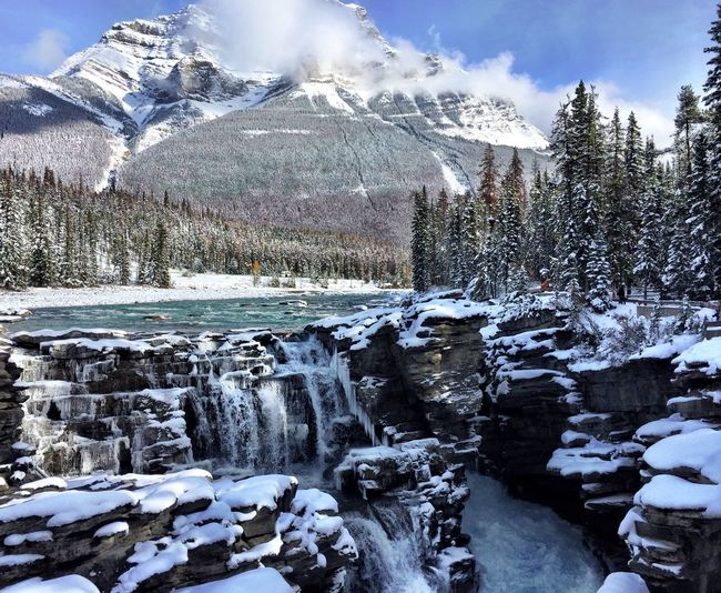 Waterfall Athabasca River Canada Canadian Rockies  IPhoneography Athabasca Falls Snow Cold Temperature Winter Tree Beauty In Nature Sky Nature Scenics - Nature Plant Cloud - Sky Day Mountain Tranquil Scene Tranquility White Color Frozen Covering Environment Outdoors Snowcapped Mountain