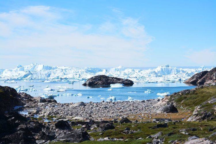 Ilulissat, Greenland, July | UNESCO world heritage site | impressions of Jakobshavn | Disko Bay Kangia Icefjord | huge icebergs in the blue sea on a sunny day | climate change - global warming Beauty In Nature Nature Outdoors Icebergs Iceberg Greenland Climate Change Global Warming UNESCO World Heritage Site Arctic Melting Glacier Natural Beauty Cold Temperature Day Summer Tranquility Nordic Scenery Scenics - Nature No People Water Ice Beautiful Silent Landscape Landscape My Best Photo