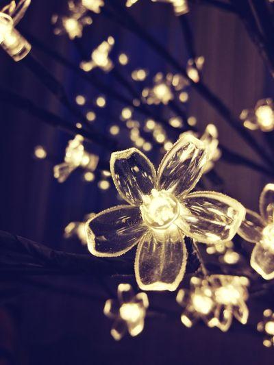 Christmas Close-up Night No People Illuminated Shiny Indoors  Gold Colored Christmas Lights Christmas Decoration Gold EyEmNewHere