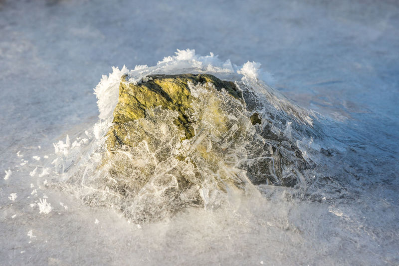 Arctic Beach Beauty In Nature Close-up Cold Cold Temperature Cristal Day Focus On Foreground Frost Frozen Ice Nature No People Northern Norway Norway Outdoors Rock Sea Snow Stone Water Winter
