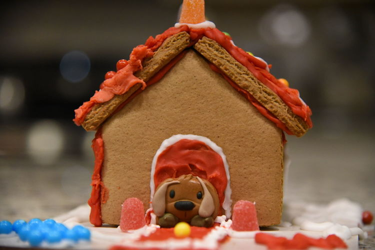 In the gingerbread doghouse