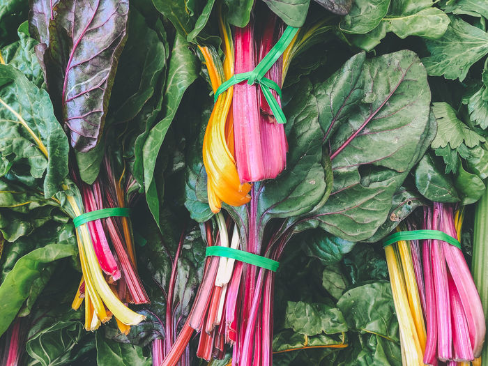 Close-up of multi colored leafy greens for sale in market