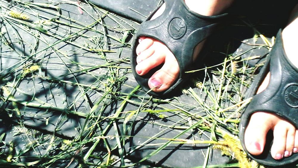 Nature Outdoors Person Footpath Plant Day Eyeem Market Eyeemphoto Showcase: September Showcase: 2016 Wolfzuachis @wolfzuachis Nailpolished Ionitaveronica 2016 Grass Plants Toes Toeselfie Toenail Toenails Body Part Feets Selective Focus Feet