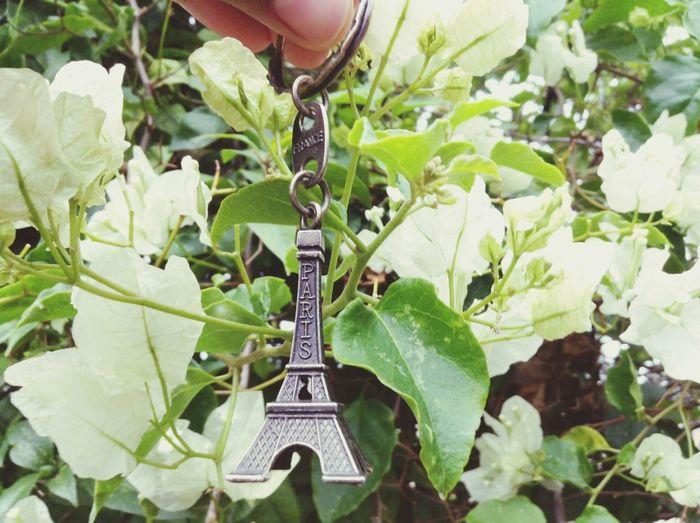 Souvenir Paris France