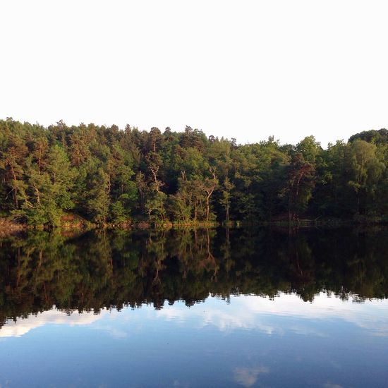 Enjoying Nature MADE IN SWEDEN Water Reflections EyeEm Nature Lover