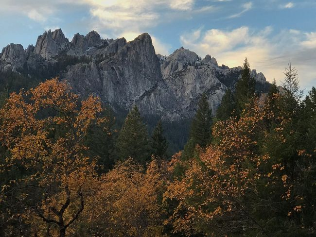 Tree Nature Beauty In Nature Sky Mountain Tranquility Cloud - Sky Scenics Outdoors No People Tranquil Scene Day Autumn Forest Growth Landscape Castle Crags, California