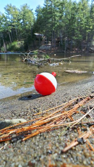 Bobber Fishing Lakeside Lost Washed Ashore Open Edit Red And White Waters Edge Grounded Blue Sky Pinetrees Sandy Beach Nature_collection Resting Place Lake Life Water_collection Nature Photography Check This Out Beautiful Nature Eyemphotography Kiomi Collection