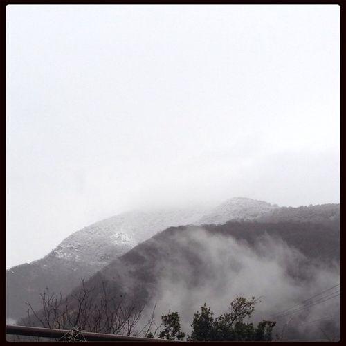 Снег)