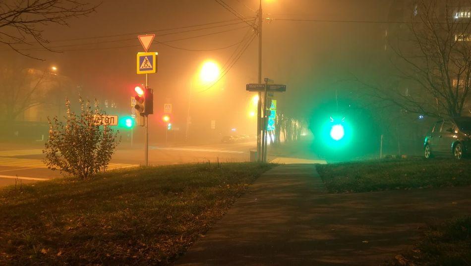 Ночь туман город Москва светофор перекрёсток город перекрёсток Москва светофор туман City Illuminated Road Sign Tree Stoplight Lighting Equipment