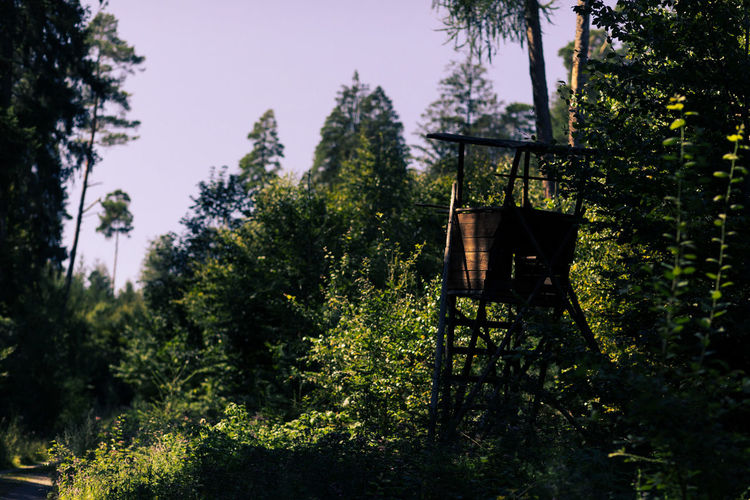 Low angle view of birdhouse against trees