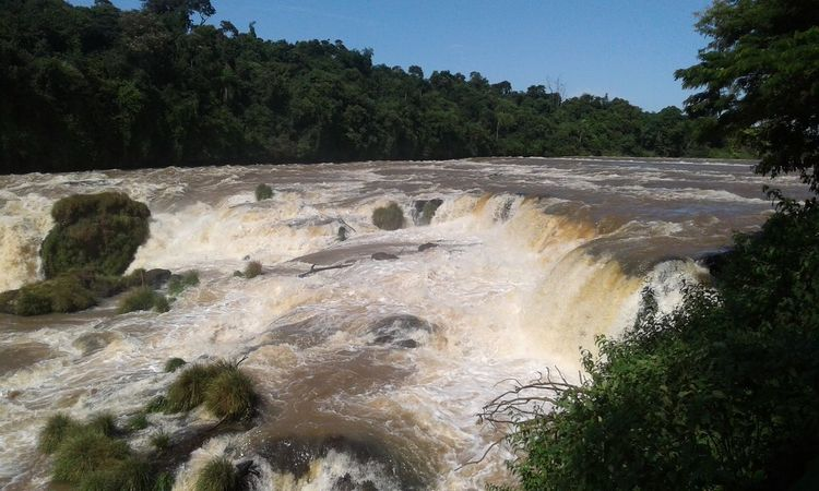 Ciudad Del Este Salto Monday Beauty In Nature Day Forest Landscape Motion Nature No People Outdoors River Scenics Sky Tree Water Waterfall