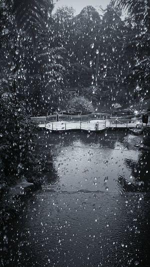 Waterfall Water Waterdrops Blackandwhite Newbie Black & White Monochrome