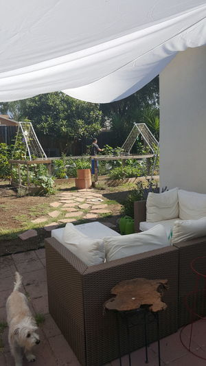 Happy place.... Growyourown Backyardgarden Organicgardening Relaxing At Home