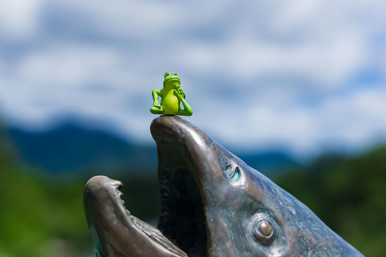 Close-Up Of Frog Figurine On Statue