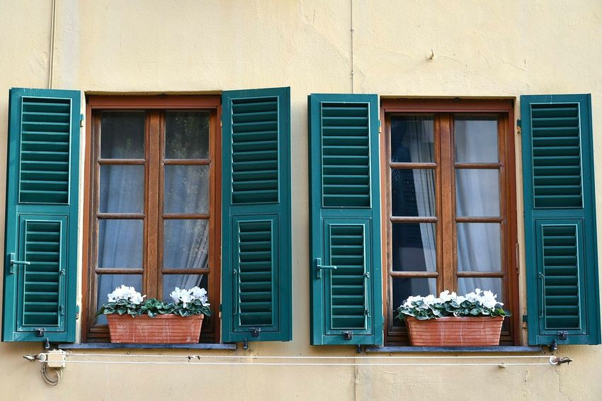 potted plants at windows Potted Plants Windows White Flowers Architecture Facade Detail Yellow House  Details Genova Liguria,Italy Village House Italian Riviera Travel Destinations Italian House