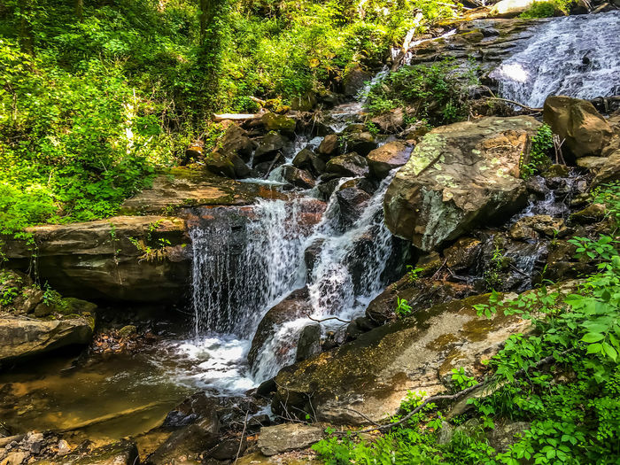 Tail End of the Falls Beauty In Nature Day Flowing Flowing Water Forest Growth Idyllic Motion Nature No People Non Urban Scene Non-urban Scene Outdoors Plant Power In Nature River Rock Rock - Object Rock Formation Scenics Stream Tranquil Scene Tranquility Water Waterfall